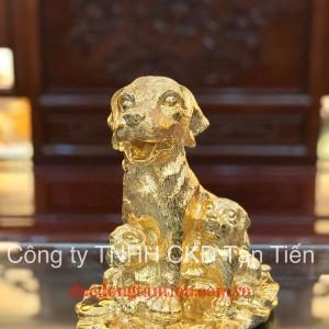 Chó Đàn Phong Thuỷ 02